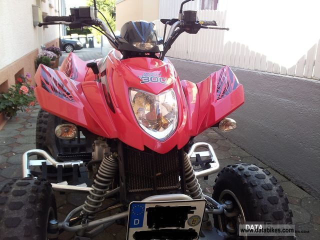 2009 Arctic Cat  Dvx 300 Motorcycle Quad photo