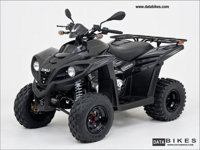 2011 Dinli  300 SpezialX 2x4 only 3839, - Motorcycle Quad photo