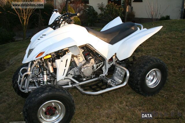 2011 Dinli  450 Motorcycle Quad photo