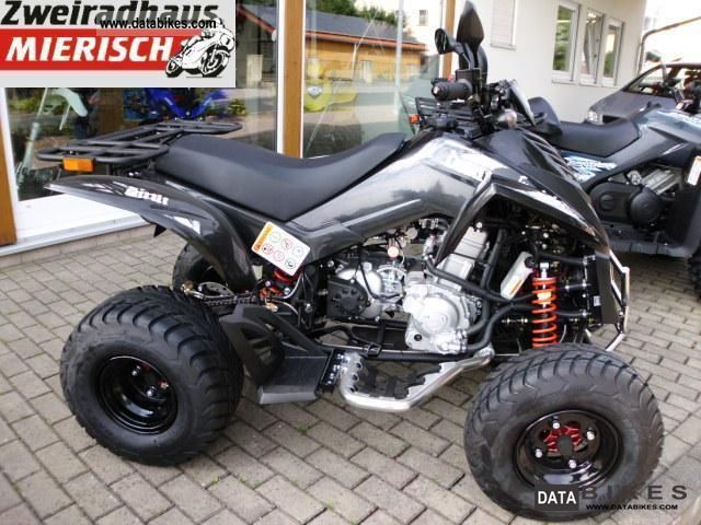 2011 Dinli  Rookie Quad 300 special Motorcycle Quad photo