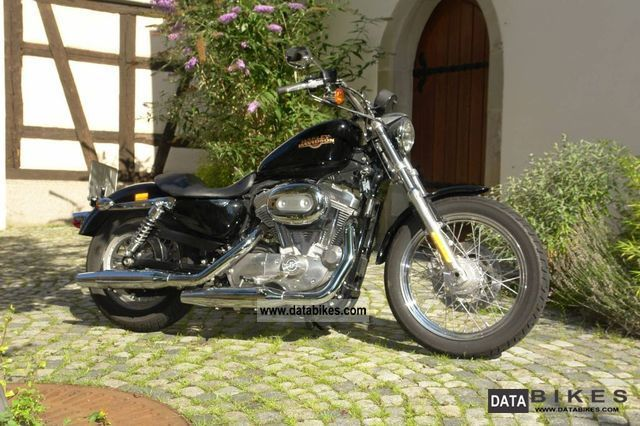 2007 Harley Davidson  Sportster 883 Low Motorcycle Chopper/Cruiser photo