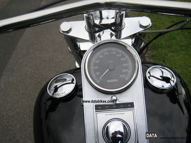 2003 Harley Davidson FXST Softail Conversion 250 Jubimodell