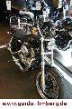 2011 Harley Davidson  XL 883 Sportster 2012 L SuperLow MJ Motorcycle Chopper/Cruiser photo 8