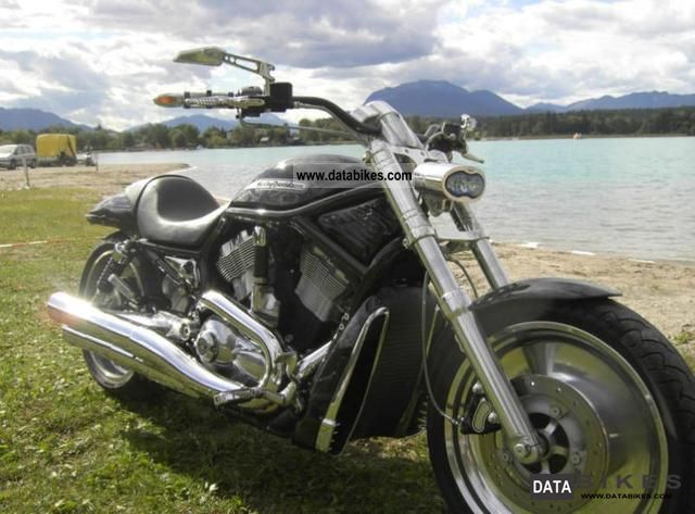 2004 Harley Davidson  V ROD ONLY Motorcycle Chopper/Cruiser photo