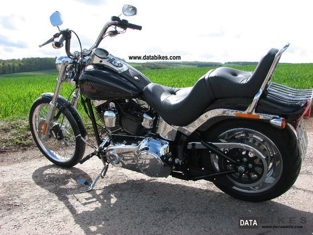 2009 Harley Davidson  Softail Custom - FXSTC Motorcycle Chopper/Cruiser photo
