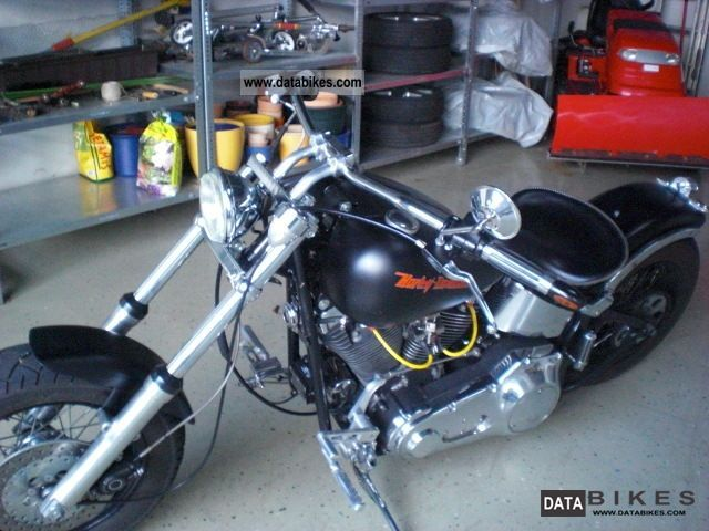 Harley Davidson  Custom Bike 1998 Chopper/Cruiser photo