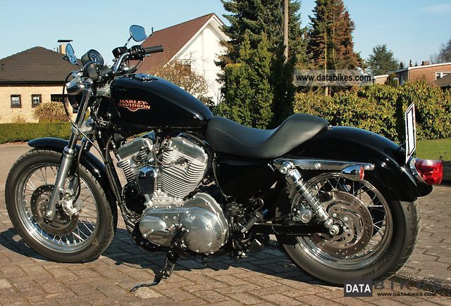 2008 Harley Davidson  Sportster 883 Low Motorcycle Chopper/Cruiser photo