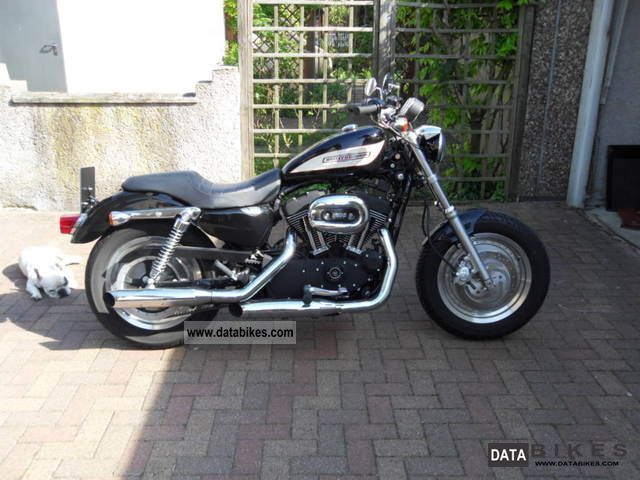 2006 Harley Davidson  Sportster Roadster Motorcycle Chopper/Cruiser photo