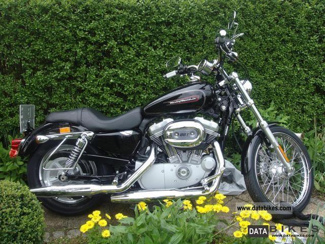 2010 Harley Davidson  sportster custom xl 883 Motorcycle Chopper/Cruiser photo