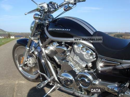 2004 Harley Davidson  Top maintained Harley V - Rod leave. Motorcycle Chopper/Cruiser photo