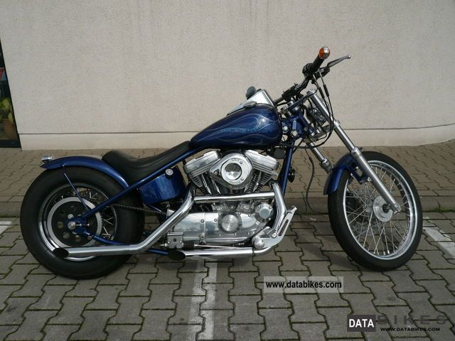 2002 Harley Davidson  XL1200 Motorcycle Chopper/Cruiser photo