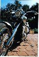 1994 Honda  VT 600 Motorcycle Chopper/Cruiser photo 2