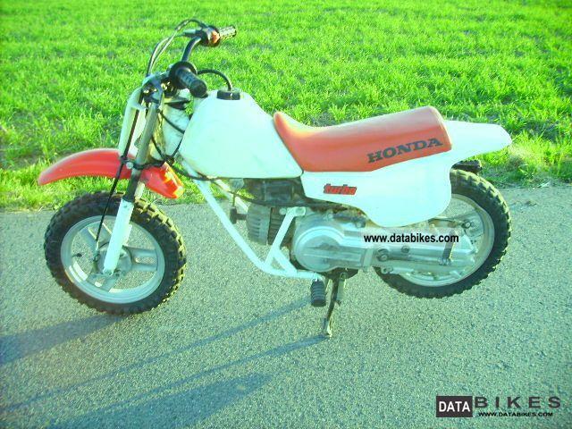 2000 honda qr 50 kids motocross bike pw 50 lem sx jr. Black Bedroom Furniture Sets. Home Design Ideas