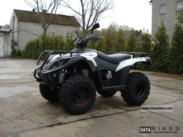 Linhai  ATV 310 white 2011 Quad photo