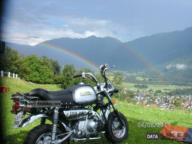 2008 Skyteam  Gorilla 50 Motorcycle Lightweight Motorcycle/Motorbike photo