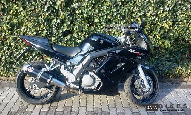 2008 Suzuki  650 SV SA Special Edition Motorcycle Sports/Super Sports Bike photo