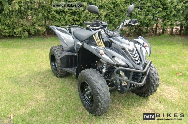 Yamaha  YFM 450 FX Wolverine 2010 Quad photo