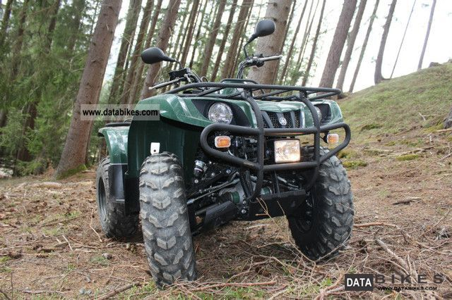 Yamaha  YFM350 Grizzly 4WD 2010 Quad photo