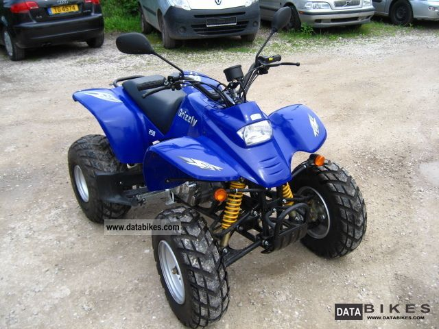 2003 Other  RAM 250 grizzly Motorcycle Quad photo