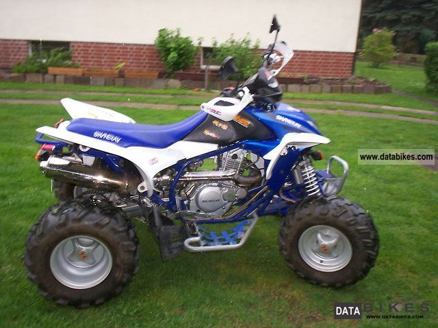 2008 Other  Shineray XY300STE Motorcycle Quad photo