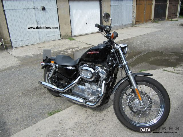 2007 Harley Davidson  883 Low Motorcycle Chopper/Cruiser photo