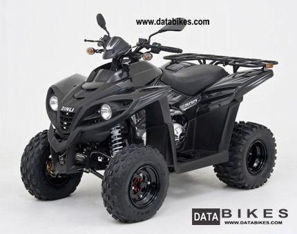 2011 Dinli  801-270 Motorcycle Quad photo