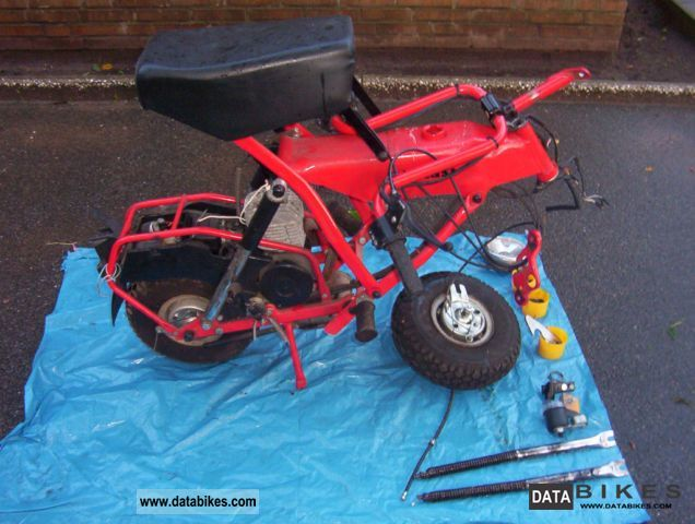 1995 Other  Di Blasi Motorcycle Motor-assisted Bicycle/Small Moped photo