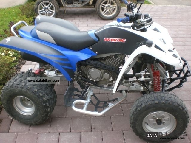 2008 Adly  300 Intercepter Motorcycle Quad photo