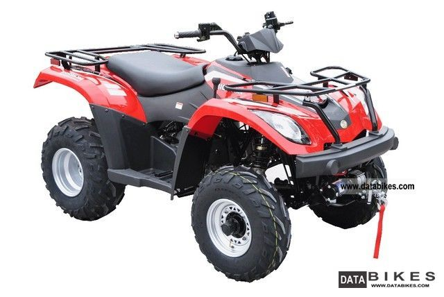 2012 Linhai  300 4X4 Motorcycle Quad photo