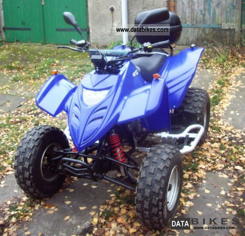 Hercules  atv 300s 2004 Quad photo