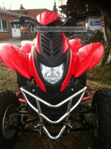 2008 Dinli  rc Motorcycle Quad photo