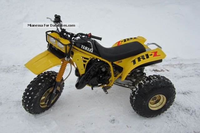 1985 Yamaha  TRI-Z Motor Cross 250 Trike Motorcycle Rally/Cross photo