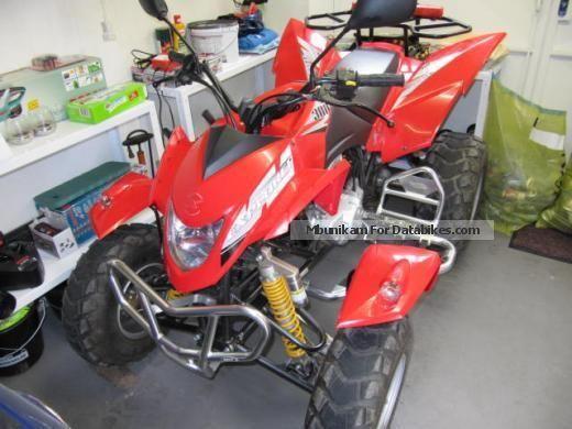 2009 Explorer  Stinger 300 Motorcycle Quad photo