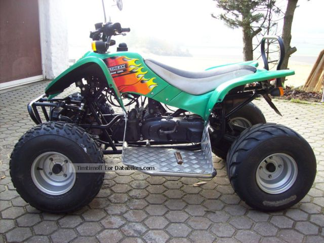2008 Seikel  ACCESS 50 cc quad 2 man Approval Motorcycle Quad photo