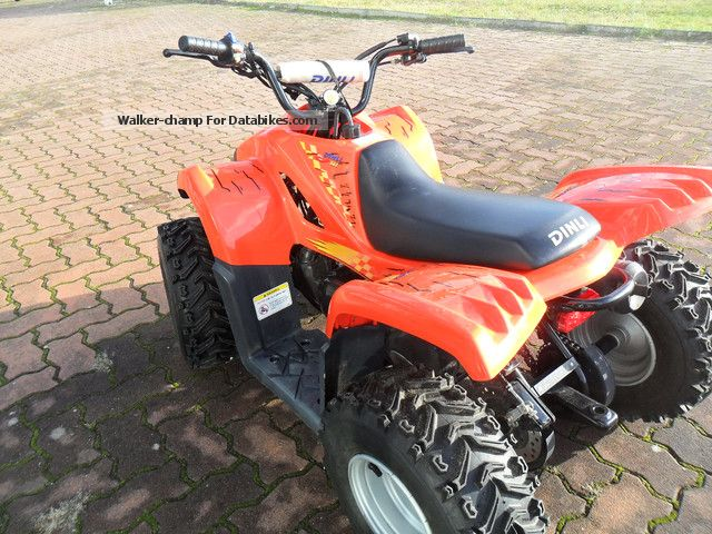 2005 Dinli  JP 502-50 Kinderquad Motorcycle Quad photo