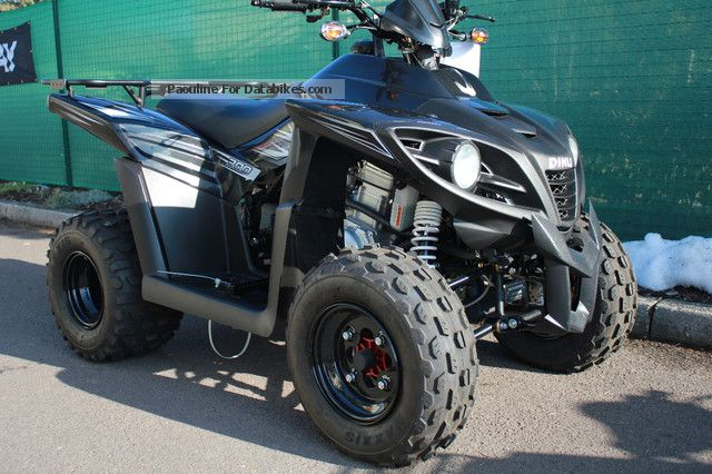 2013 Dinli  300 special X offroad Motorcycle Quad photo