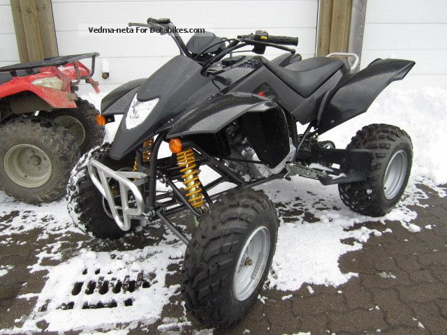 2010 SMC  300 L including delivery Motorcycle Quad photo