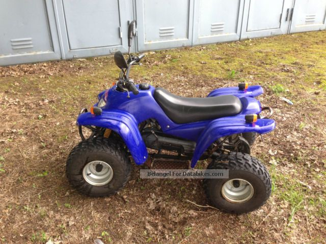 2006 Adly  ATV 50 Motorcycle Quad photo