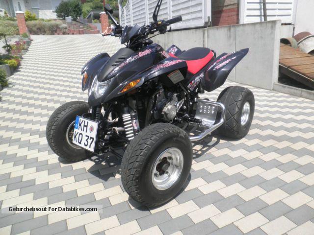 2010 Dinli  DL901-450 Motorcycle Quad photo