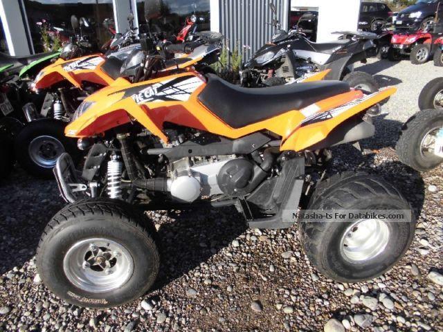 2013 Arctic Cat  300 DVX Motorcycle Quad photo