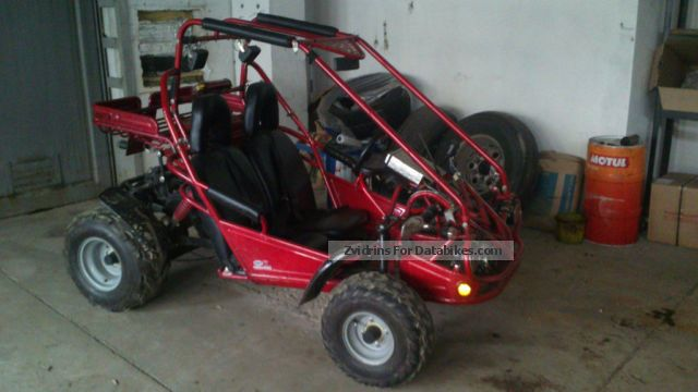 2004 Other  buggy Motorcycle Quad photo