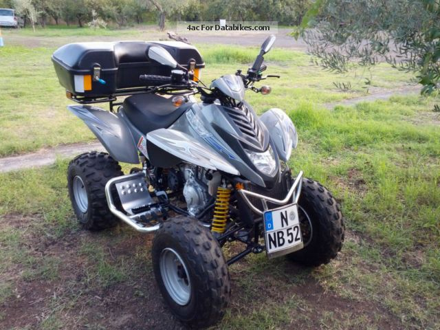 2009 Dinli  QUAD DL801 Motorcycle Quad photo