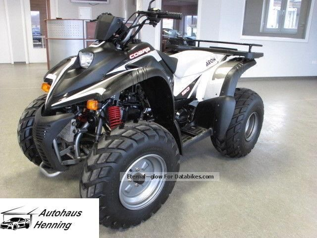 2013 Aeon  Cobra 180 Quad Motorcycle Quad photo