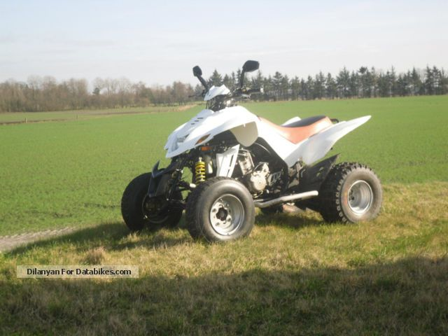 2009 Dinli  450 Motorcycle Quad photo