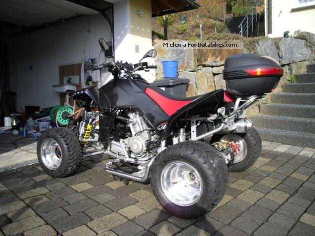 2009 Dinli  460 Motorcycle Quad photo