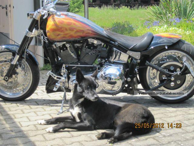 Harley Davidson  Harley-Davidson Custom Bike 1991 Chopper/Cruiser photo