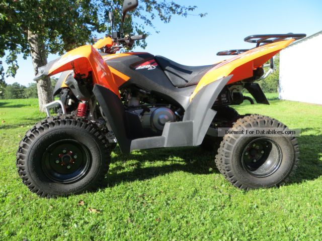 2008 Adly  320 Motorcycle Quad photo