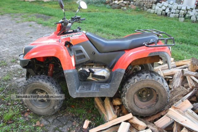 2009 Aeon  Cross Country 300 Motorcycle Quad photo