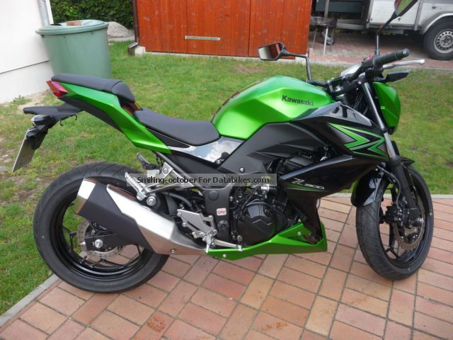 2015 Kawasaki  Z300 Motorcycle Naked Bike photo